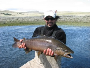 Big Browns from the Estancia del Zorro Spring Creek