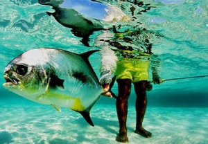 Permit Belize Style - Photo Credit: Turneffe Flats